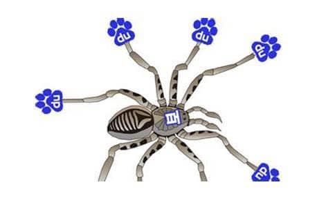 百度蜘蛛IP地址 不同ip地址代表什么